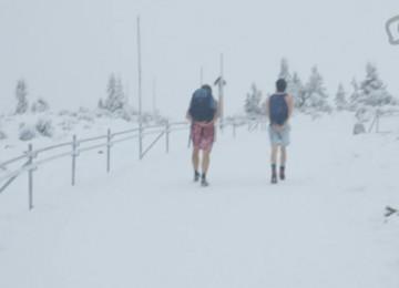 וים הוף – איש הקרח